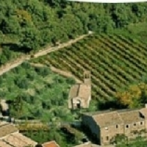 Wedding in a romantic hamlet near Montalcino, Tuscany