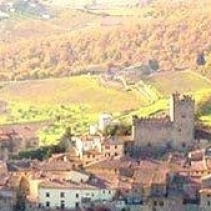 castellinainchiantiweddingmarriageheiraten(13)