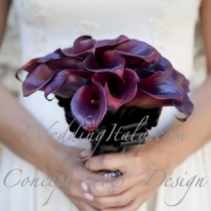 civil_wedding_castellina_chianti_tuscany_002