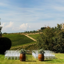 fonte_de_medici_wedding_4b