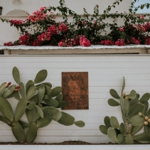 masseria_santa_teresa_wedding_43